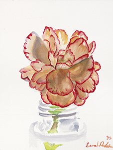 Watercolor Painting of a Carnation