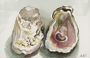 Fine Art Painting of an Oyster Shell