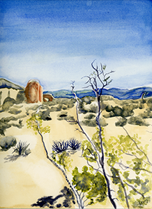 Watercolor ine Art Painting of a Creosote Bush at Joshua Tree National Park