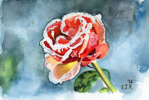 Fine Art Painting of a  flower covered in ice during the winter