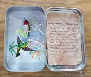 Altoid Box Sculpture of a Ruby Throated Humming Bird