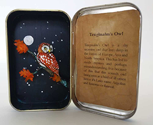 Altoid Box Sculpture of Tengmalms Owl